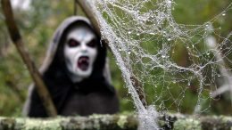 Scary Cobweb Party Celebration Halloween Death