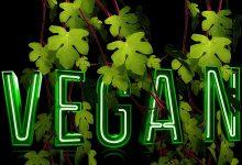Should I go Vegan: Nutrition and Dieting in Twenty Seventeen