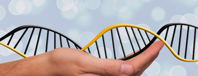 Genome Sequencing to Cost Less than $1000
