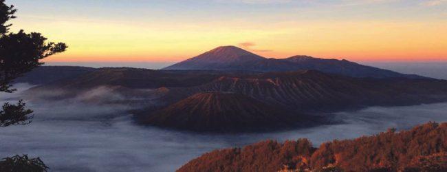 Java- the forgotten jewel of Indonesia