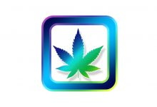 New app tests how stoned you are